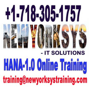 HANA Online Training by Industry Experts at Newyorksys.com
