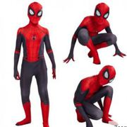 Spiderman Far From Home Halloween Costume for Adults
