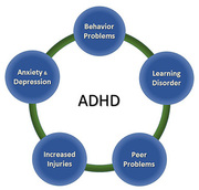 Take a look at the ADHD treatment NJ | EBL Coaching